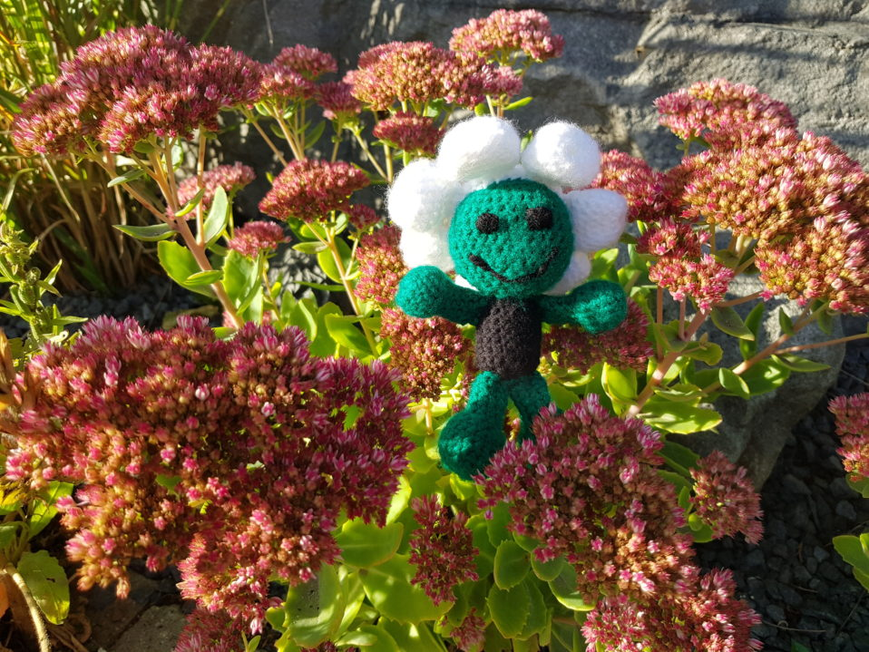 Gartentipps f r den oktober first klaas steht ihnen zur for Garten tipps